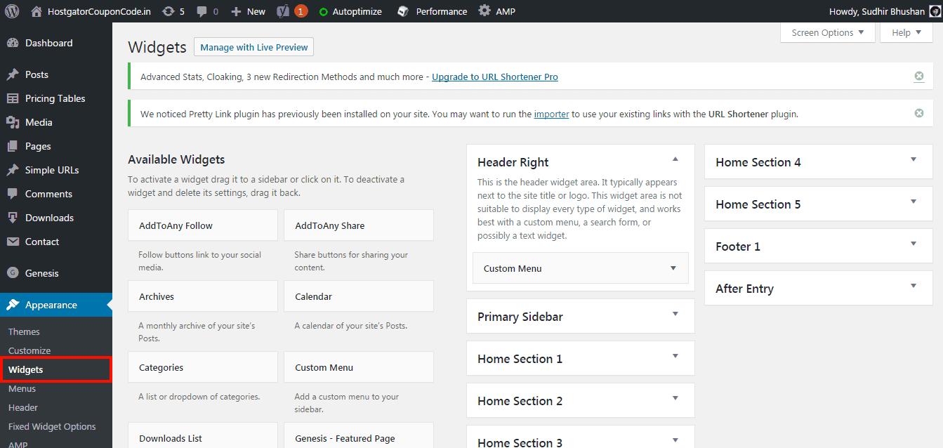WordPress manage widgets